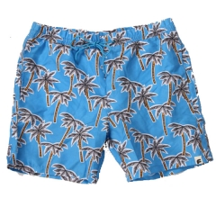 Mens Printing Board Shorts